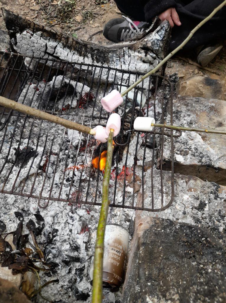 barbecue partie